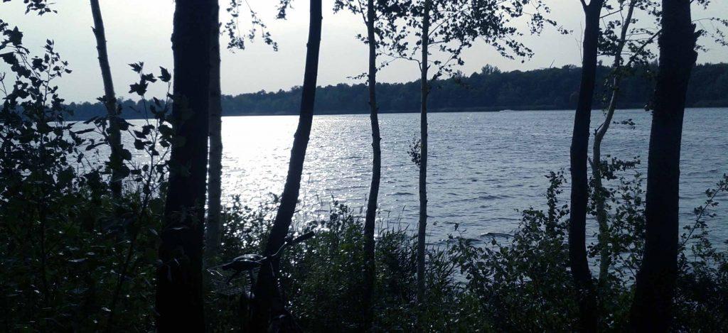 Abendstimmung am Kulkwitzer See (Kulki) am Rand von Leipzig